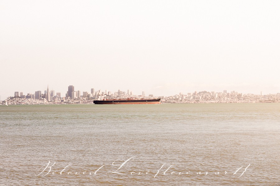 destantion wedding photographer san francisco boat and skyline © beloved love photography #loveasart