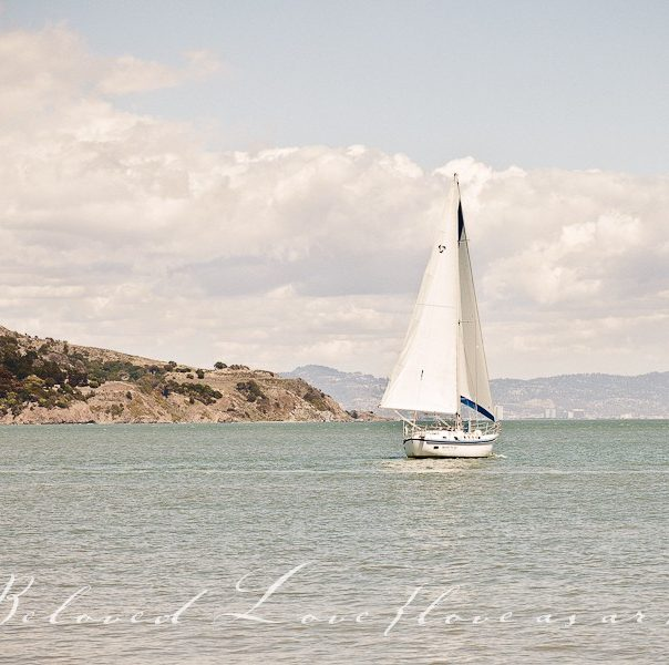 san francisco wedding photography san francisco bay sailboat © beloved love photography #loveasart