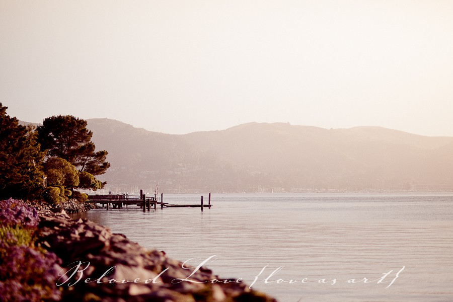 international wedding photographer tiburon, marin county california © beloved love photography #loveasart