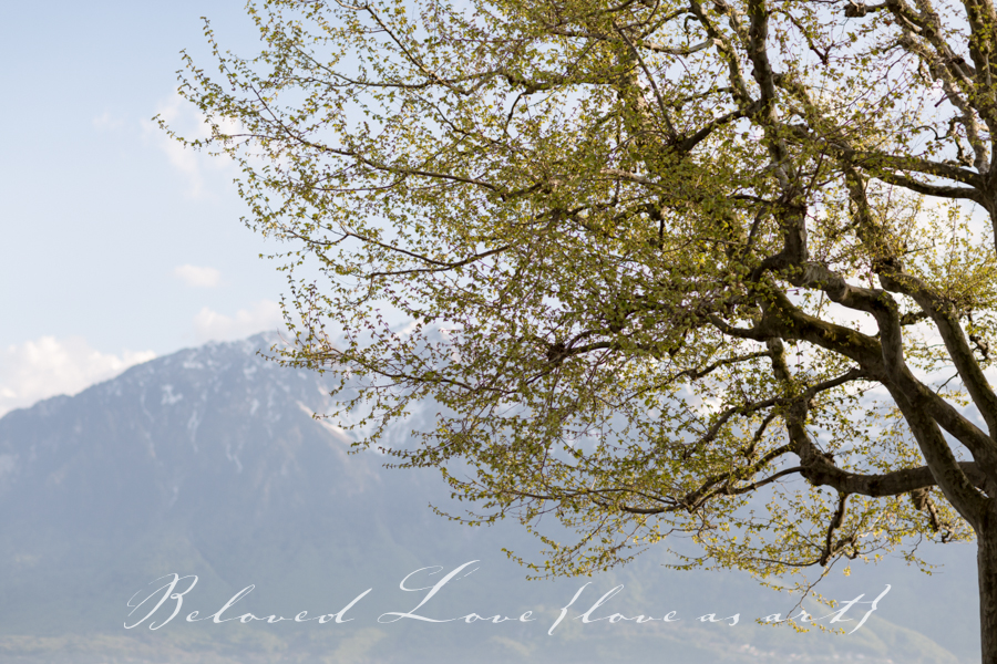 the lovely lake Geneva Switzerland © beloved love photography #loveasart